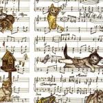 107 Katzenmusik