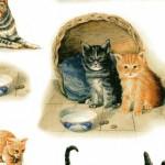 127 Katzen-groß
